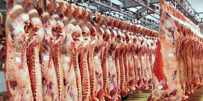 ارتفاع أسعار اللحوم